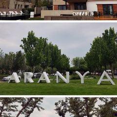 Aranya User Photo