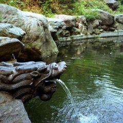 Fenglong Mountain User Photo