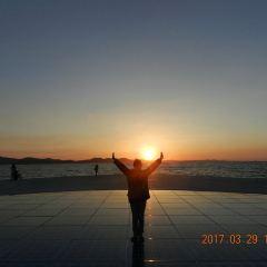 Sea Organ User Photo