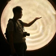 칭다오3D예술전이상한집전시관 여행 사진