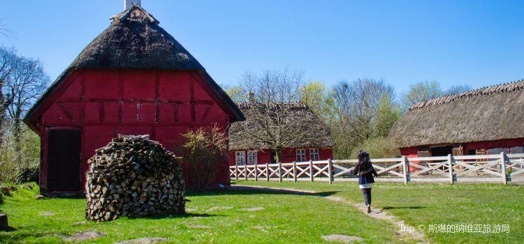 The Funen Village