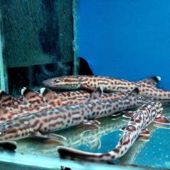 해양박물관 여행 사진