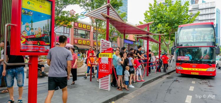 City Sightseeing Tour Bus2
