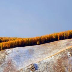 아얼산 국가산림공원 여행 사진