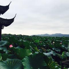 완룽구이위 여행 사진
