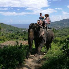 Seaview Elephant Camp User Photo