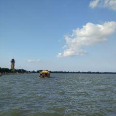 溱湖國家濕地公園用戶圖片