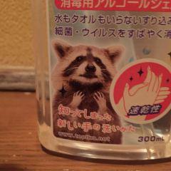 Kasagiya User Photo