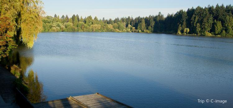 洛斯特湖1