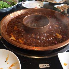 Jin Guan Hui · Yuan Xiang Hot Pot (Huan Cheng Xi Yuan) User Photo