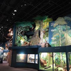 克利夫蘭自然歷史博物館用戶圖片
