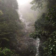 東天目山景區用戶圖片