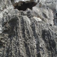 Boomerang Rock Climbing and Adventure Park User Photo