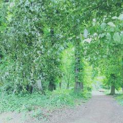 金頭公園用戶圖片