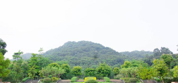 Longtoushan Forest Park1