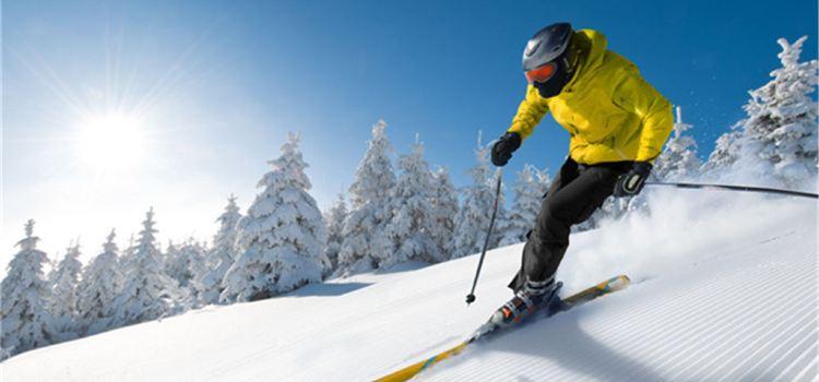 龍鳳山滑雪滑草場