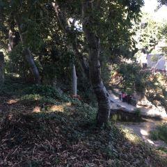 San Luis Obispo, California User Photo