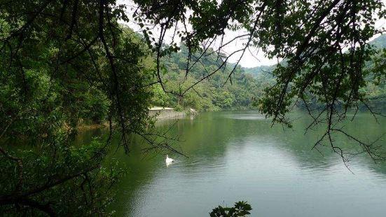慈湖生態公園