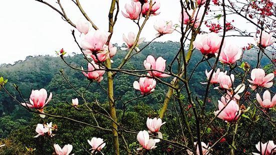 Fongshu Lake Trail