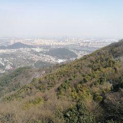 超山風景區用戶圖片