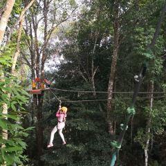 Sky Line Adventure Jungle Leap User Photo