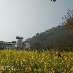 Baojing Palace User Photo