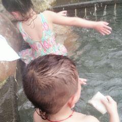 泰軒溫泉用戶圖片