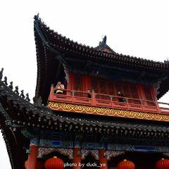 荊州古城用戶圖片