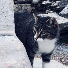 Ataturk Monument User Photo