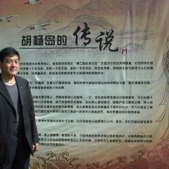 胡楊島用戶圖片