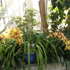 United States Botanic Garden User Photo