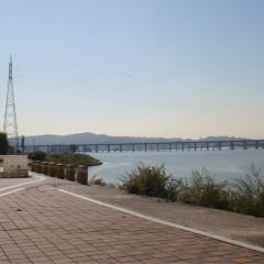 Banpo Hangang Park User Photo