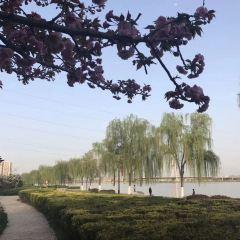 咸陽湖景區用戶圖片