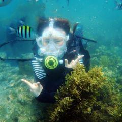 Sanya Bay Diving User Photo