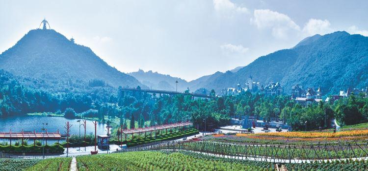 東部華僑城茶溪谷3