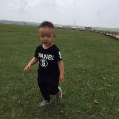 Subohan Grasslands User Photo