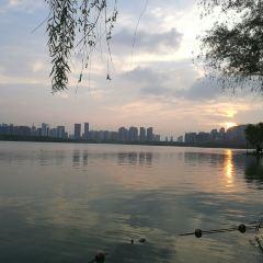 天鵝湖公園用戶圖片