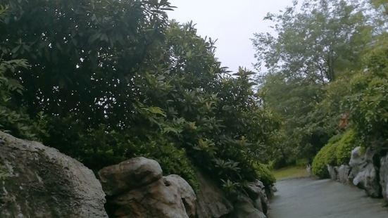 東漢彭城王墓