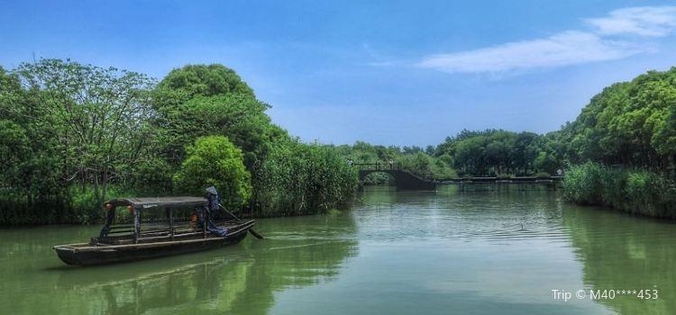 Shajiabang Scenic Area2