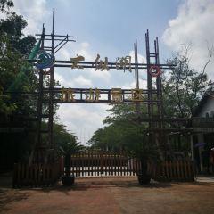 Dazonghuzhen Cultural Plaza User Photo