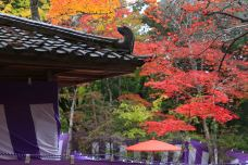 瑞宝寺公园-神户-234****816