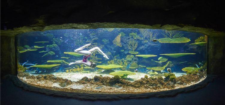南昌萬達海洋樂園1