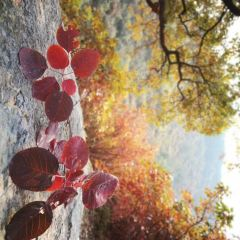 雲明山のユーザー投稿写真