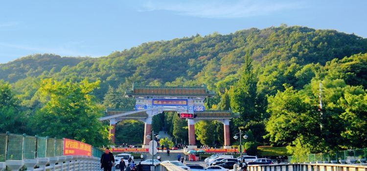 금강산공원1