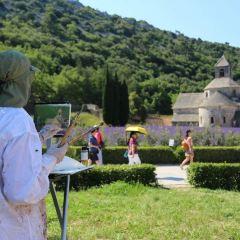 Abbaye Notre-Dame de Senanque User Photo
