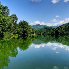 十裡雲河遊用戶圖片