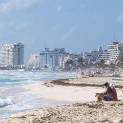 Playa Delfines User Photo
