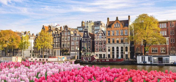 Canals of Amsterdam2