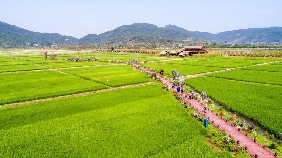 Rice Park
