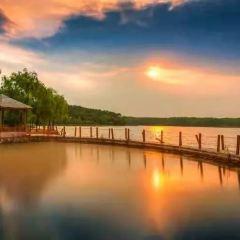 白鷺島生態旅遊區用戶圖片